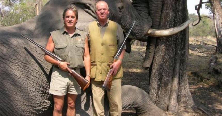 El último elefante que mata el Rey