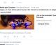 Twitter: que los anunciantes que estafan, no digan ni pío