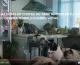 Gatos [Vídeo]: el PP hace de la mediocridad, virtud